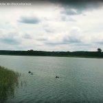 Standbild aus dem Quadrocopter-Video