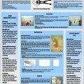 Poster - VfUBB 2003