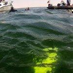 Abstieg - alle folgenden Abbildungen sind Standbilder aus den Unterwasseraufnahmen